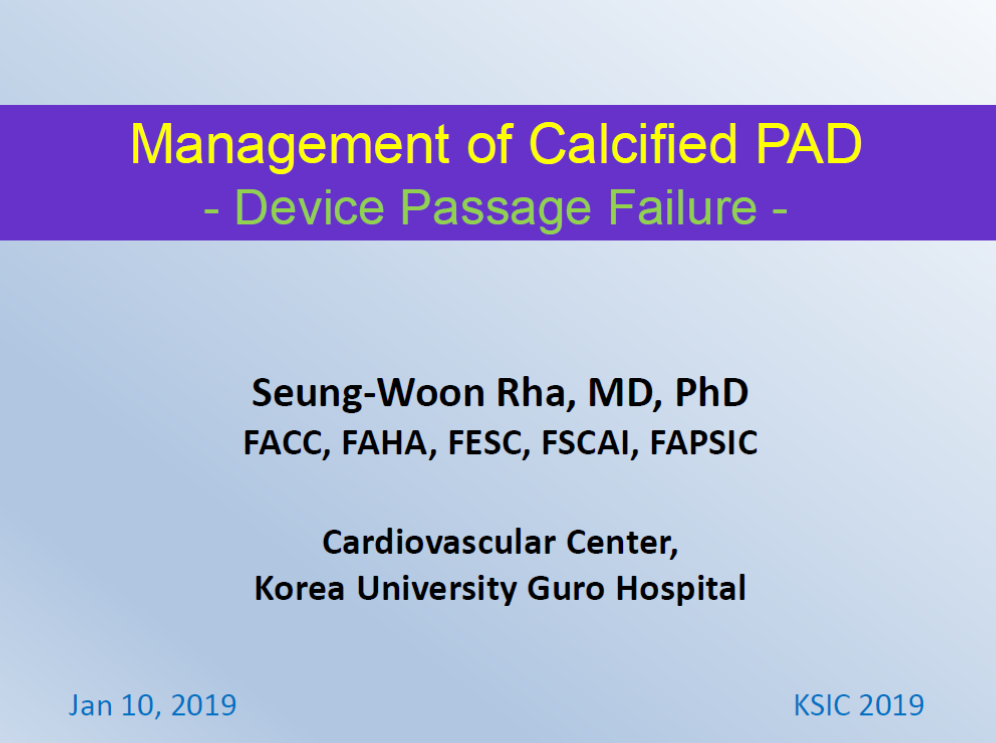 Management of Calcified PAD.png